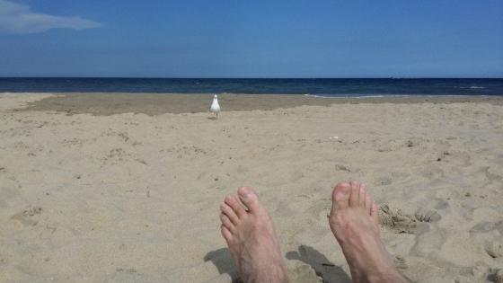 Dave on a beach